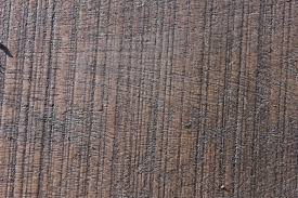Free Laminate Flooring Free Images Texture Floor Trunk Wall Pattern Brown Soil