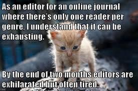 Meme Editor Online - dear james cat meme edition the james franco review