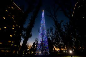 south coast plaza unveils new tree only two days after