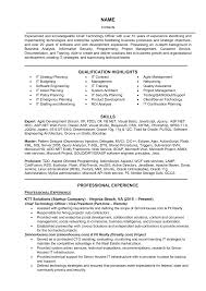 It Executive Resume Samples by It Manager Resume Samples And Writing Guide 10 Examples