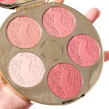 Pink Color Wheel by Tarte Amazonian Clay Blush Palette Color Wheel Review