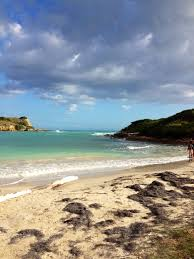 Vermont do you need a passport to travel to puerto rico images 215 best puerto rico images puerto rico island jpg