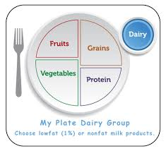 parents u0027 guide about the health benefits of the dairy group