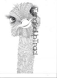 ostrich zentangle coloring page for adults and by tangleduptraci