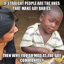 Gay Community Meme - if straight people are the ones that make gay babies then why you so