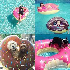 colorful donut swimming pool toy doughnut inflatable toy swan