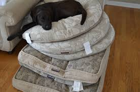 Doggy Beds Furniture Kirkland Dog Costco Dog Beds In Black And White For Pet
