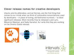 clever release names for creative developers 1 638 jpg cb 1407854932