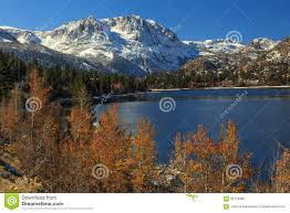 fall color june lake california usa stock photo image