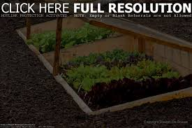 how to grow a garden home outdoor decoration