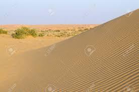 thar desert beautiful dunes of thar desert during sunset rajasthan india near