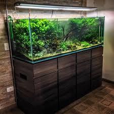 50 aquascape aquarium design ideas aquarium design aquariums