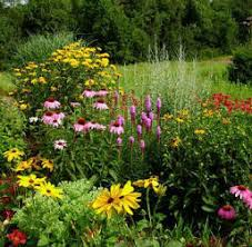 perennial flower garden ideas rozdv decorating clear
