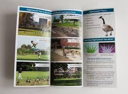 tri fold brochure design delaware graphic design print and web