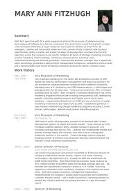 Director Of Marketing Resume Examples by Vice President Of Marketing Resume Samples Visualcv Resume
