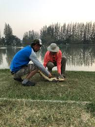 it monster lake amphoe ban pong thailand cafes and campfires