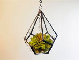Geometric Hanging Planter by High Quality Glass Hanging Planters Buy Cheap Glass Hanging