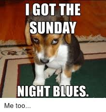Sunday Night Meme - 20 memes about how we feel on a sunday night sayingimages com