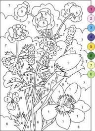 nicole u0027s free coloring pages color number adults