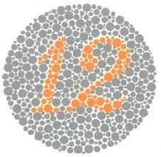Colour Blind Percentage Color Blindness Test Test Color Vision With Ishihara Test For