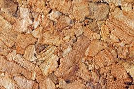 Cork Material Is Cork Flooring One Of The Most Sustainable Building Materials