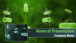 free templates for powerpoint bacteria bacterial infection powerpoint templates bacterial infection