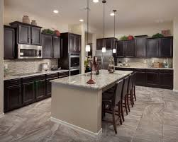 Dark Kitchen Cabinets Houzz - Kitchen photos dark cabinets
