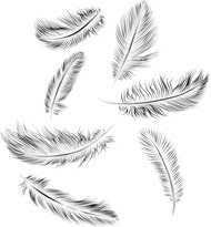 25 beautiful small feather tattoos ideas on pinterest feather