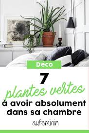 chambre d h e insolite que vous cherchiez des plantes qui survivent dans votre chambre