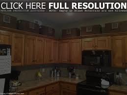 Above Kitchen Cabinet Storage by Above Kitchen Cabinet Storage Ideas Modern Cabinets