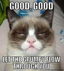 Grumpy Cat Meme No - grumpy cat meme no wallpapers gallery