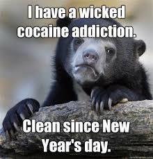 Bear Cocaine Meme - best of bear cocaine meme nose memes kayak wallpaper