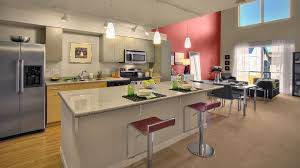 Retro Kitchen Design Ideas by Kitchen Themes For Apartments Creative Retro Kitchen Design Black