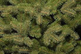 national tree 7 5 foot feel real downswept douglas