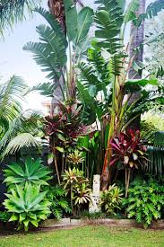 Tropical Gardening Ideas Backyard Plants Around Pool Sun Tropical Backyard Decor