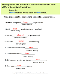 homophone choose the correct option worksheet turtle diary