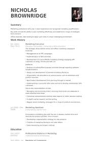 Executive Resume Sample by Marketing Executive Resume Samples Visualcv Resume Samples Database