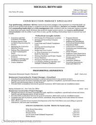 Career Focus Examples For Resume by It Pm Resume Free Resume Example And Writing Download