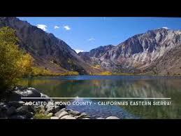 fall colors mono county california u0027s eastern sierra