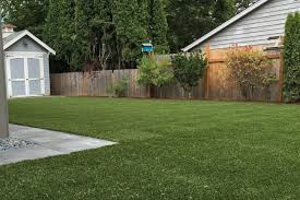 alternatives to grass in backyard a complete list of lawn alternatives for portland