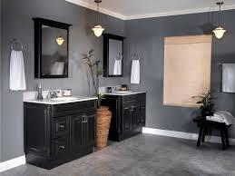 painting bathroom ideas paint bathroom ideas cumberlanddems us