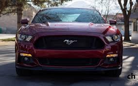 2015 Mustang V6 Black Littlemorrui2 2015 Ford Mustang Shelby Gt500 Super Snake Black Images