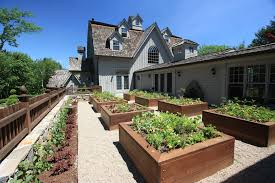 Home Decorating Tips For Beginners Staggering Vegetable Gardening For Beginners Decorating Ideas