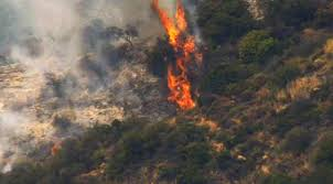 Wildfire La Area the latest weed trimmer accidentally sparks la brush fire am