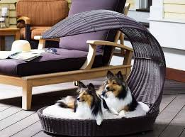 Comfortable Dog Best Dog Beds Your Dog U0027s Most Comfortable Place