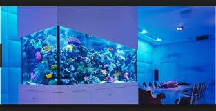 Aquascape Designs Inc Aquascape Design Ideas 1 0 Apk Androidappsapk Co