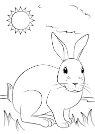 cute rabbit coloring free printable coloring pages