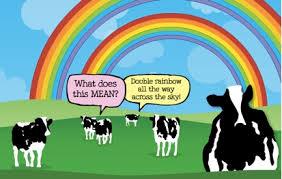 Double Rainbow Meme - meme hwk the ratchets