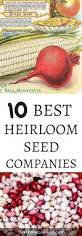 homelife 10 best plants for vertical gardens 458 best gardens tips images on pinterest gardening hacks and
