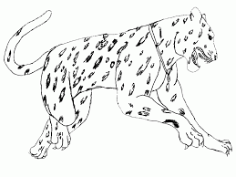south american animals coloring pages step coloring coloring home